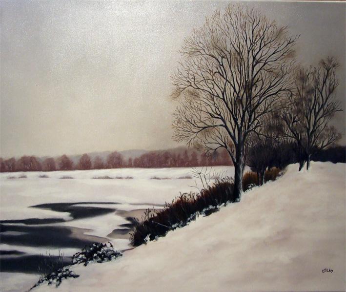 Neige sur l'étang de Méréville petit